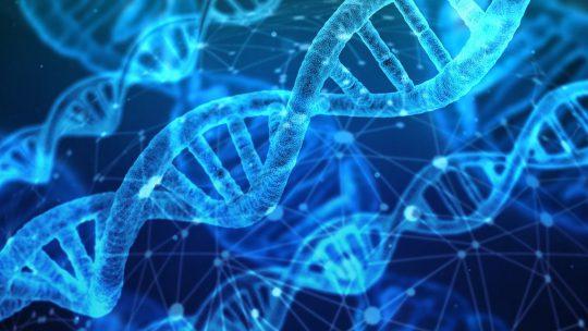 Vergaar gedetailleerde informatie met een DNA test