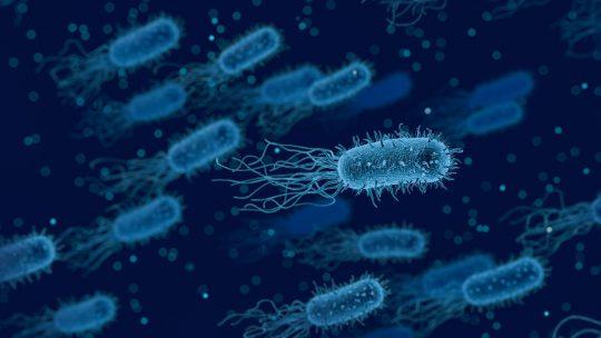 Een nieuwe baan in de life science industrie via QTC recruitment